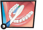 Toothbrush brushing inner surface of teeth