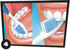 Toothbrush brushing behind front teeth on top and bottom of mouth